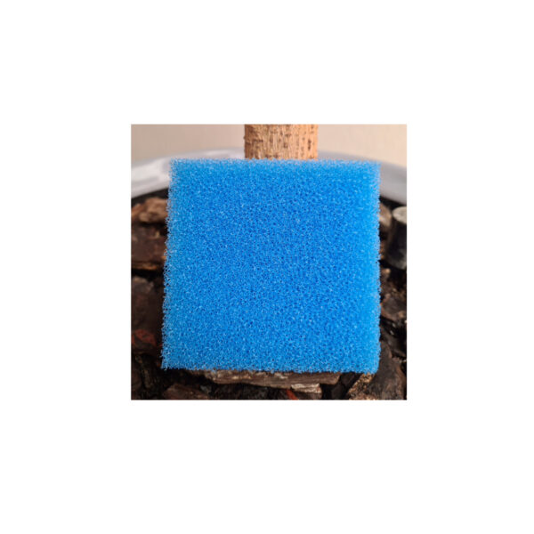 Body Exfoliating Sponge Blue